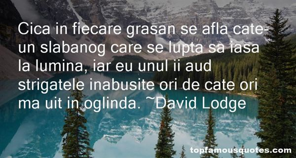 Quotes About Oglinda