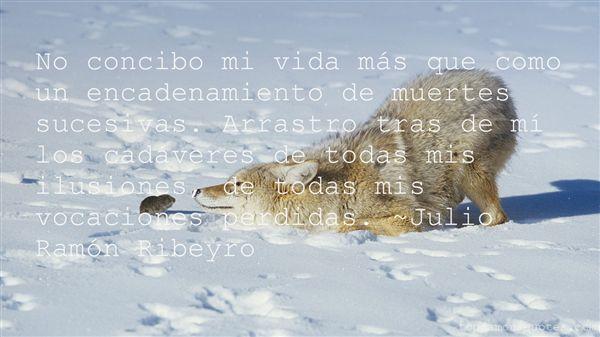 Quotes About Perdida