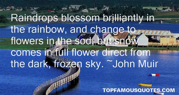 Quotes About Raindrop