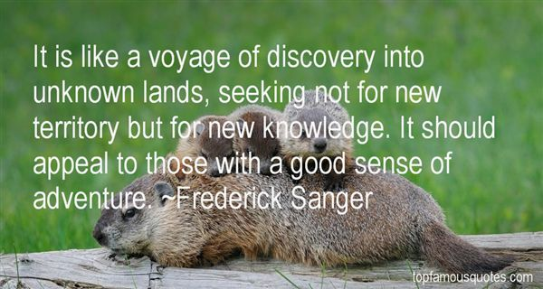 Quotes About Seeking
