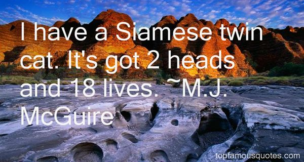 Quotes About Siamese