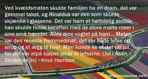 Quotes About Skulde
