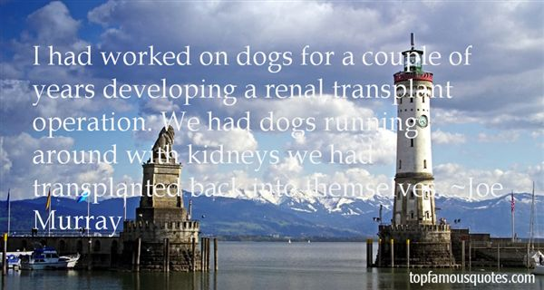 Quotes About Transplant