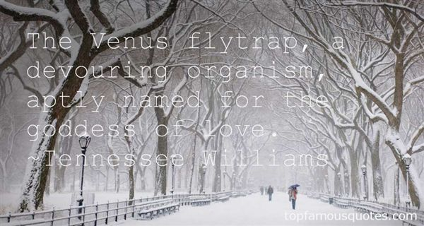 Quotes About Venus The Goddess