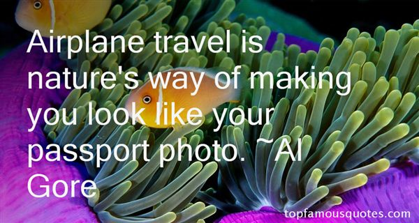 Quotes About Airplane Travel