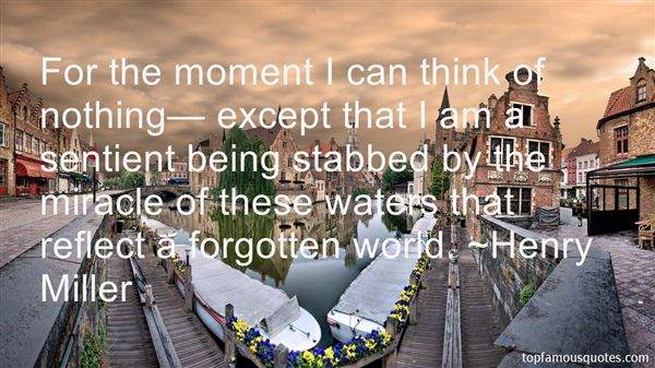 Quotes About Being Stabbed