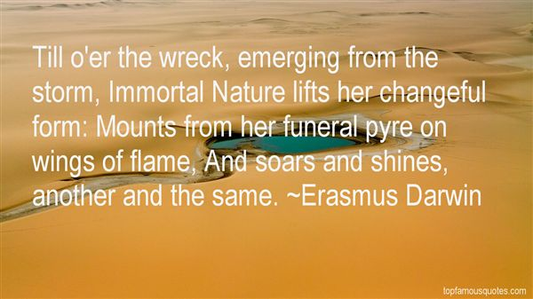 Quotes About Emerging