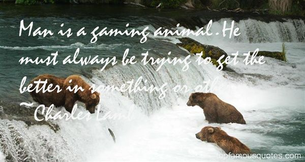 Quotes About Gaming