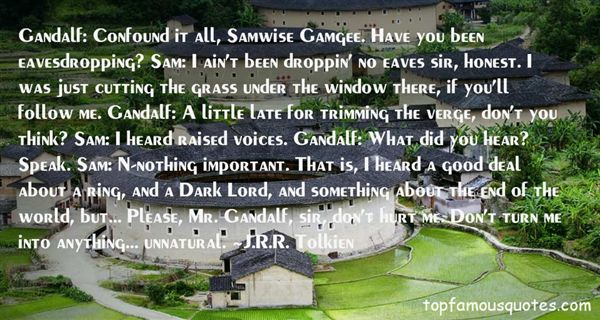 Quotes About Gandalf The Ring