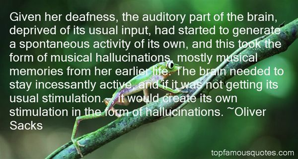 Quotes About Hallucinations