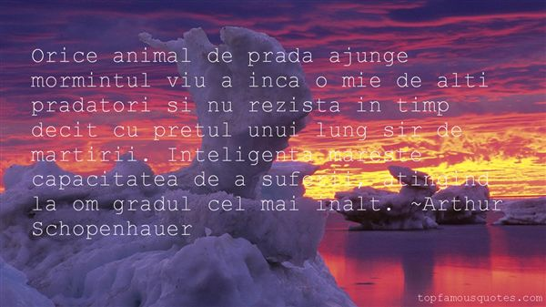Quotes About Inteligenta