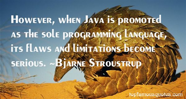 Quotes About Java Programming Language