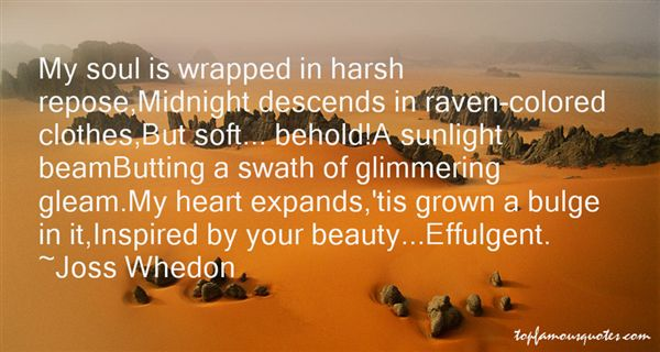 Quotes About Midnight Sun