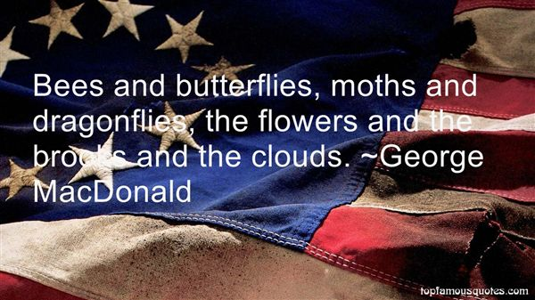 Quotes About Moths