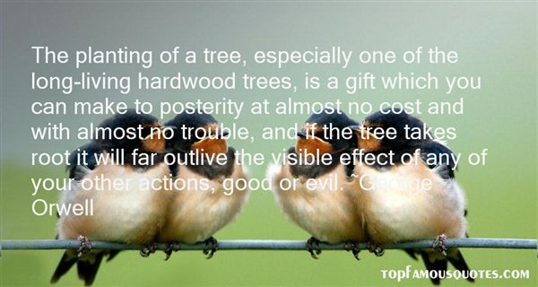 Quotes About Planting Trees