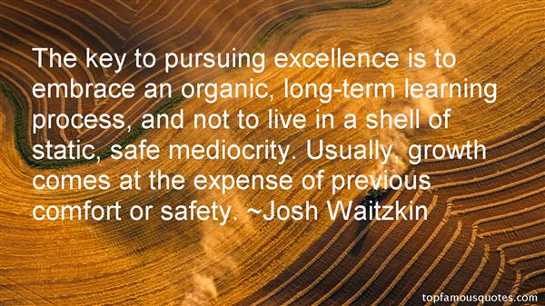 Quotes About Pursuing Excellence