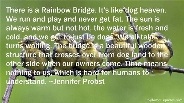 Quotes About Rainbow Bridge
