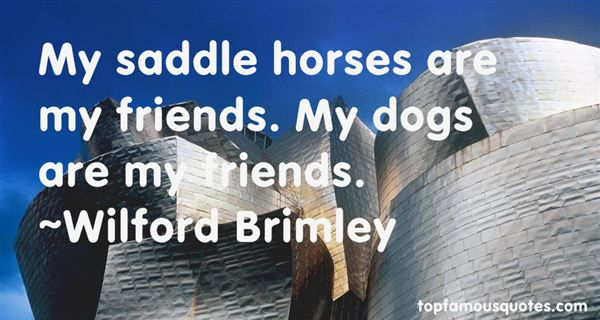 Quotes About Saddle