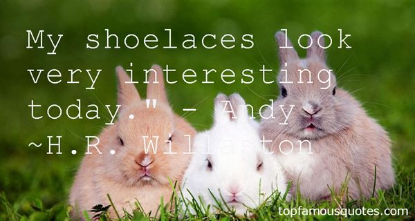 Quotes About Shoelaces