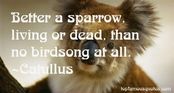 Quotes About Sparrow Birds
