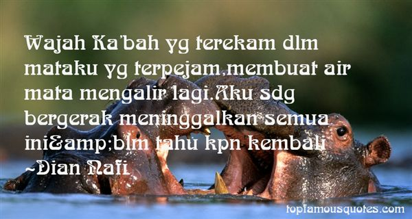 Quotes About Tahu