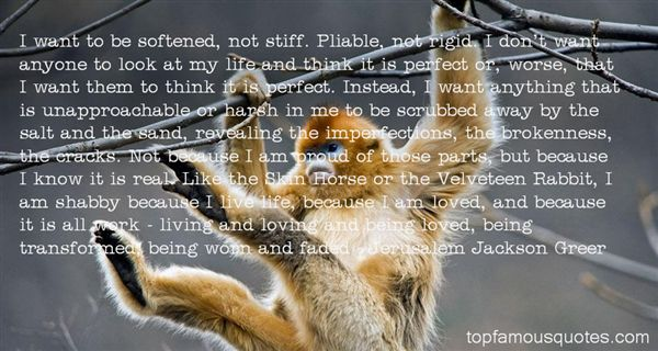 Quotes About The Velveteen Rabbit