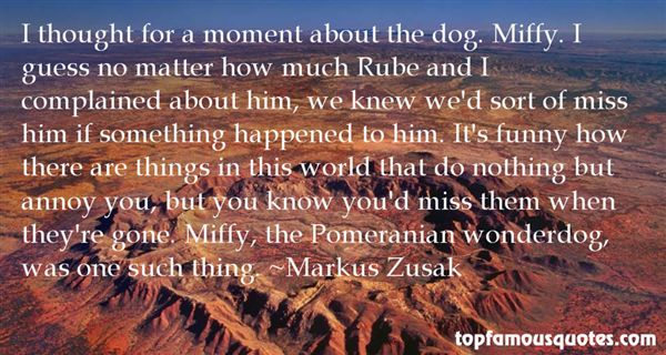 Quotes About Wonderdog