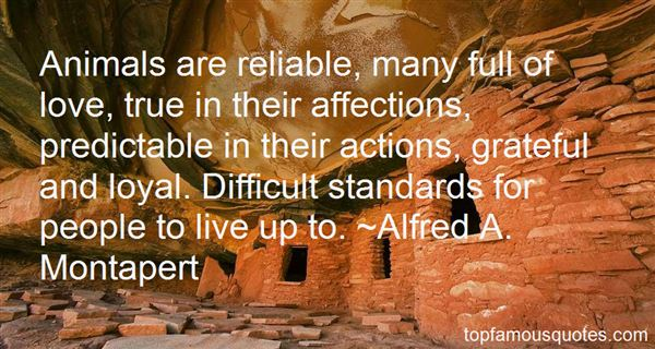 Quotes About Affections
