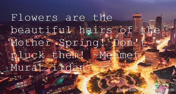 Quotes About Beautiful Hairs