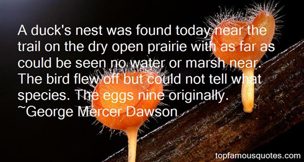 Quotes About Bird Eggs