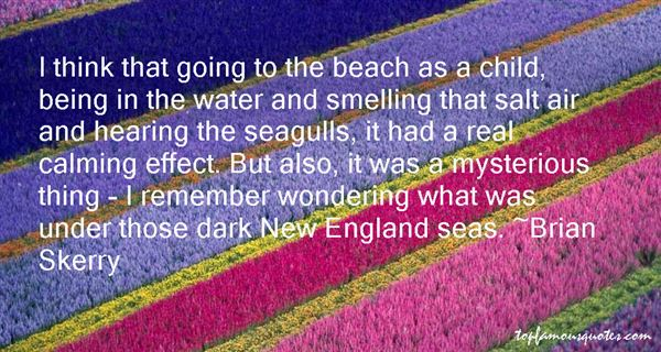 Quotes About Calm Seas
