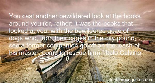 Quotes About Dog Rescue
