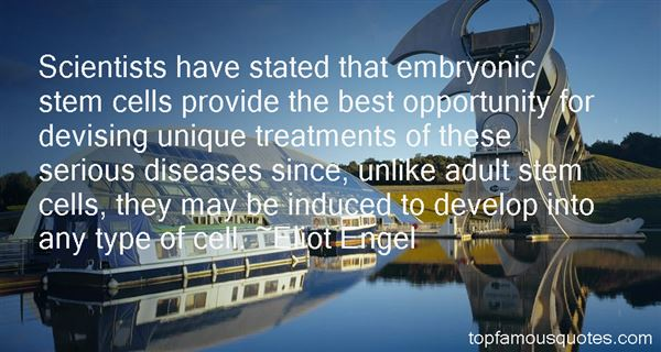 Quotes About Embryonic Stem Cells
