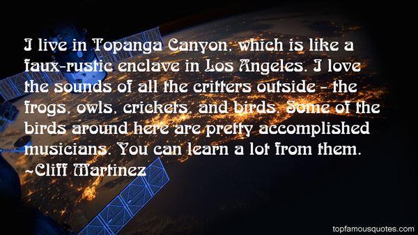 Quotes About Enclave