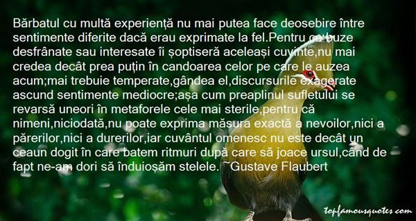 Quotes About Ferite