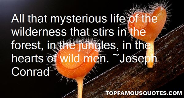 Quotes About Jungles