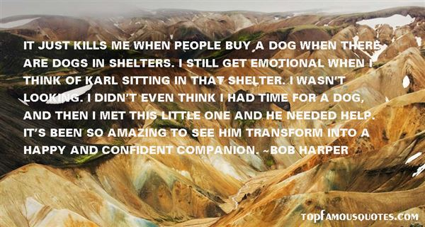Quotes About Kill Shelters