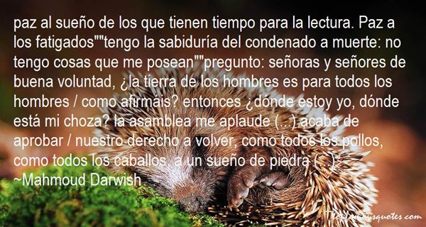 Quotes About Lectura