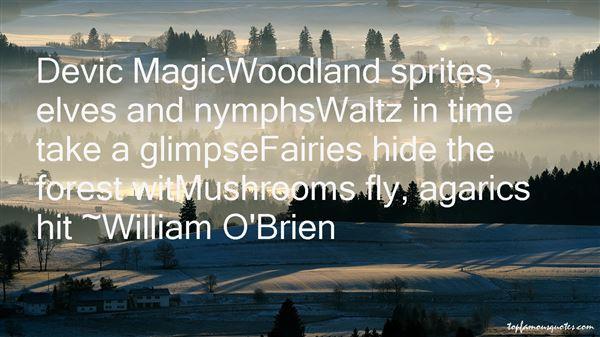 Quotes About Magic Mushrooms