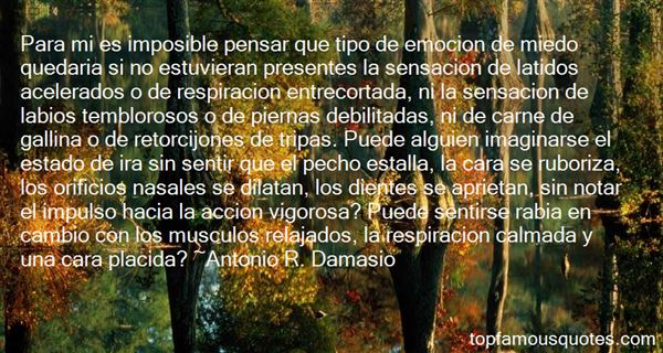 Quotes About Musculo