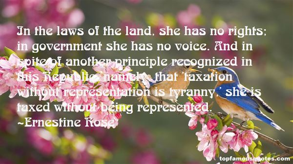 Quotes About No Taxation Without Representation