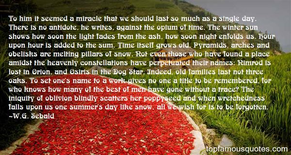 Quotes About Poppy Day