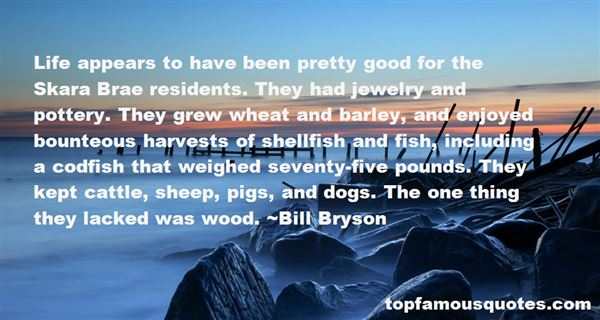 Quotes About Pound Dogs