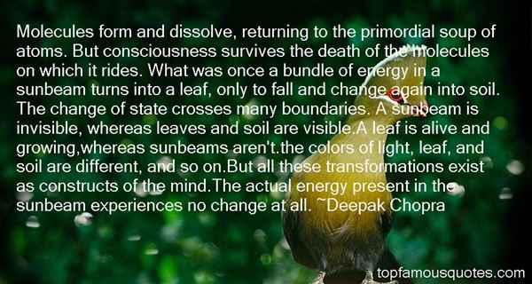 Quotes About Primordial