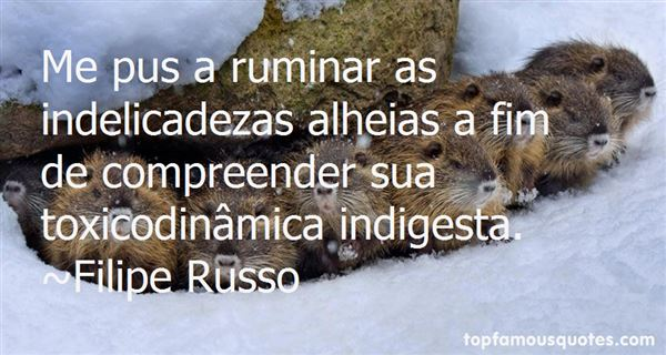 Quotes About Ruminar