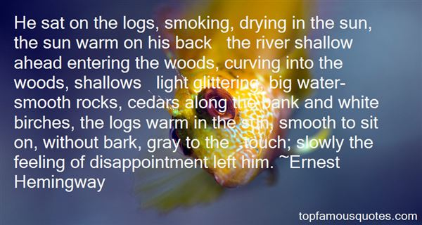 Quotes About Shallow Water