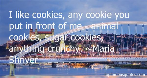 Quotes About Sugar Cookies
