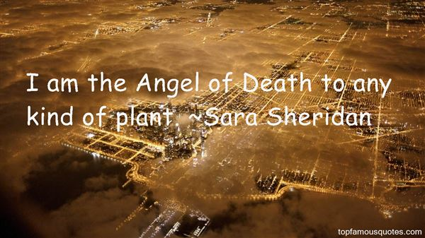 Quotes About Angel Of Death