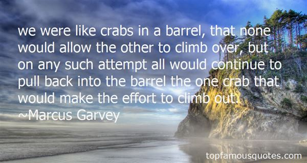 Quotes About Barrel