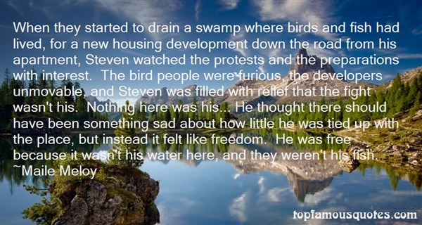 Quotes About Birds And Freedom
